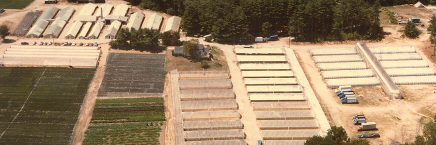 1970 Ranges, shipping and receiving. 90+ acres and 120,000 sq. ft. greenhouse space.