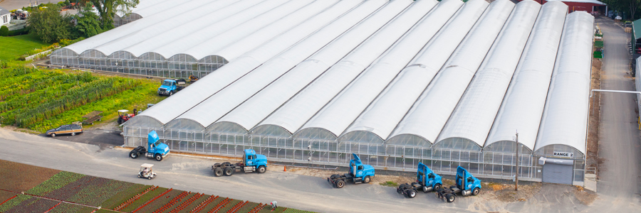 2015 Ranges, shipping and receiving. 200+ acres, ten acres of greenhouse space and a fleet of sixteen tractor trailers.